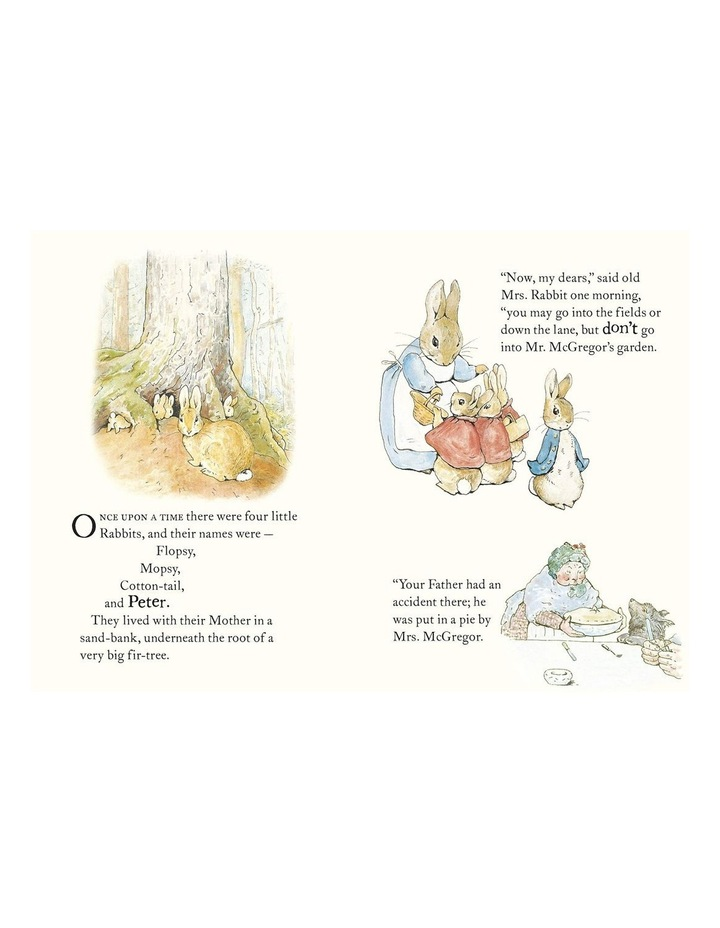 The Tale Of Peter Rabbit image 2