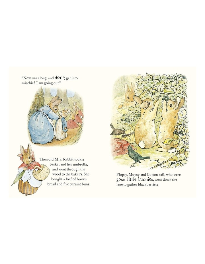 The Tale Of Peter Rabbit image 3