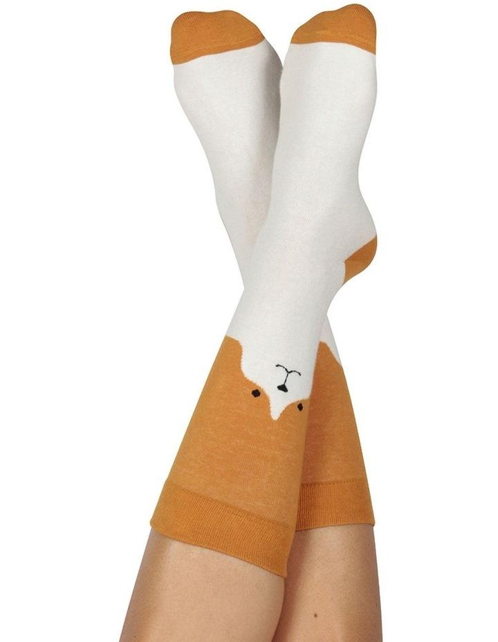 Socks Dog image 2