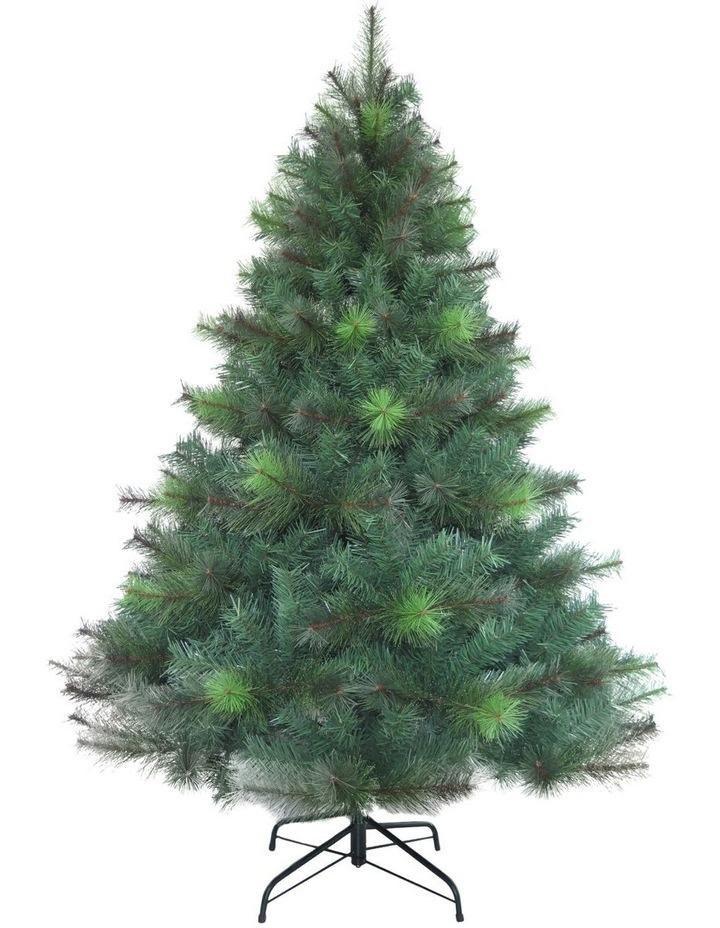 Deluxe Reno Pine Tree 210cm image 1