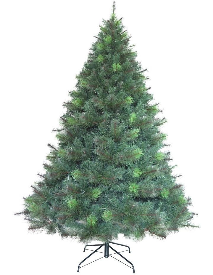 Deluxe Reno Pine Tree 270cm image 1