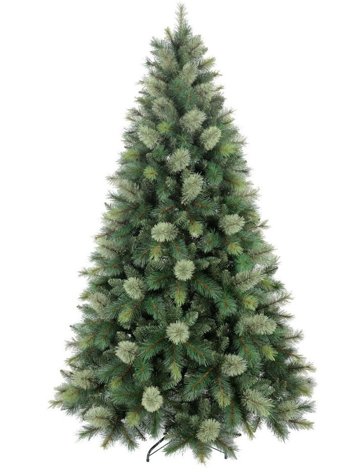 New Oregon Cashmere Pine Christmas Tree 240cm image 1