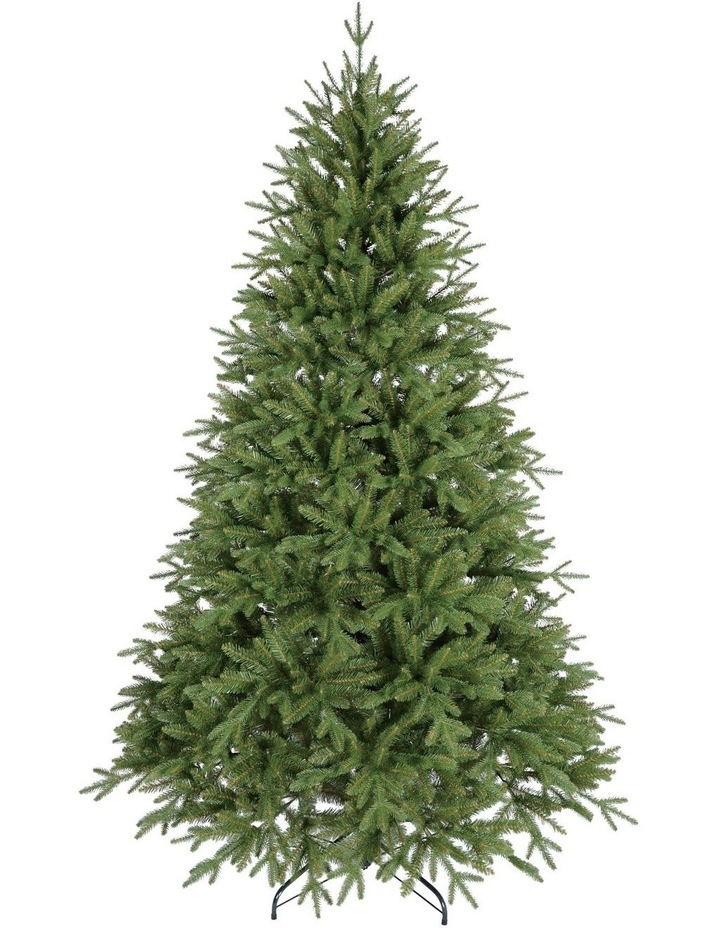 Fraser Fir Christmas Tree 210cm image 1
