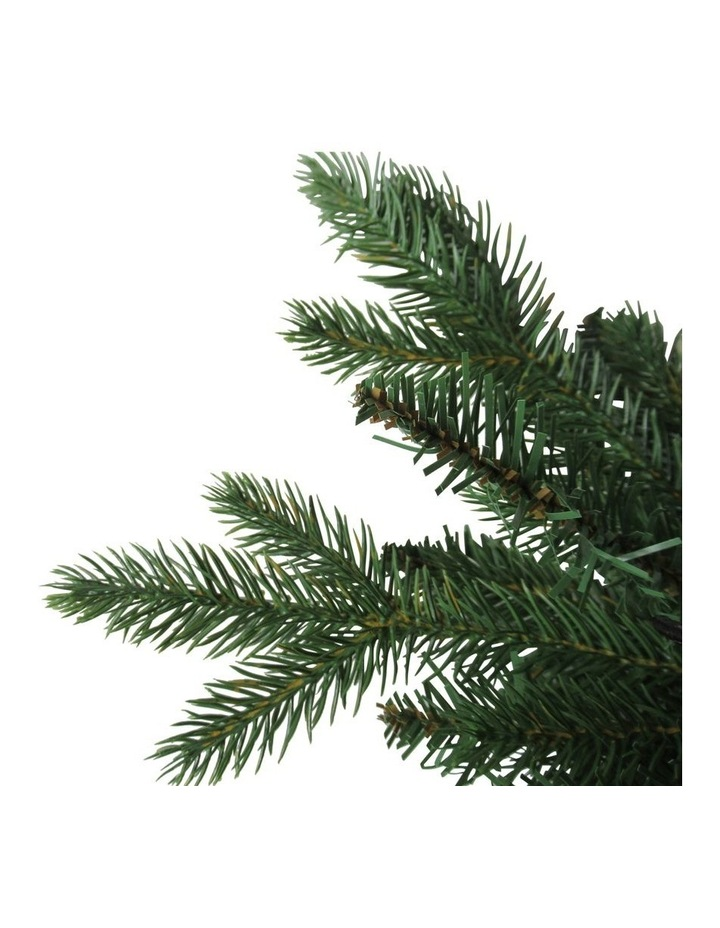 Fraser Fir Christmas Tree 210cm image 2