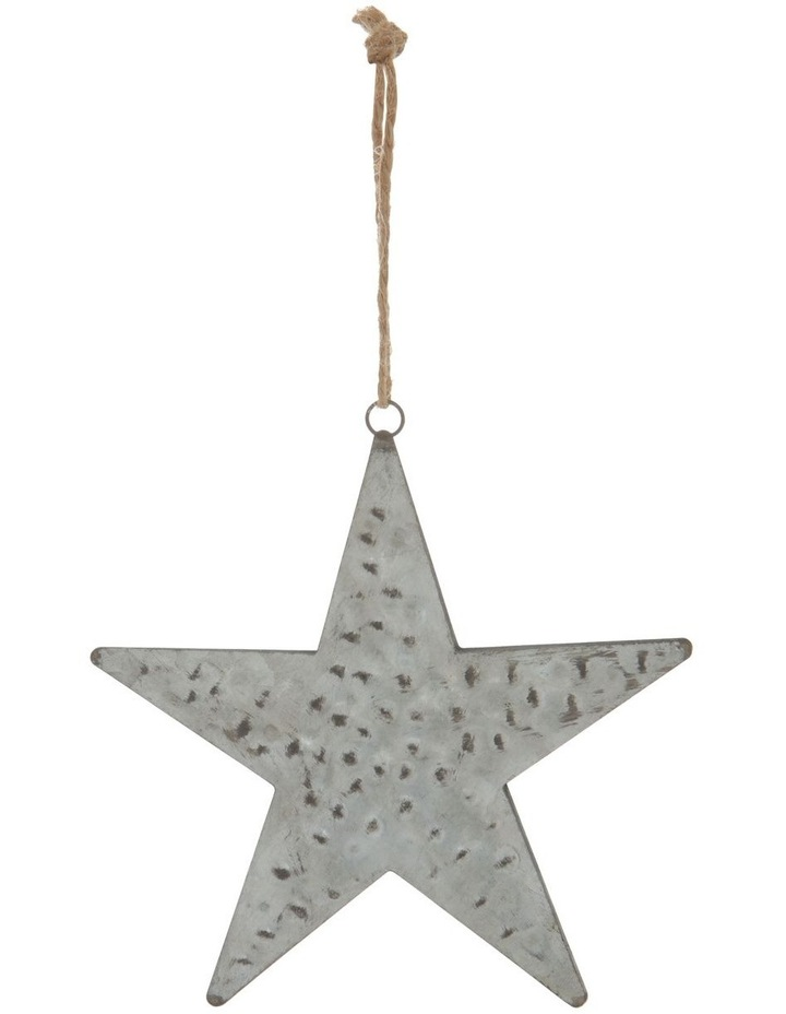 Eucalyptus Silver Hammered Metal Star Hanging Decoration image 1