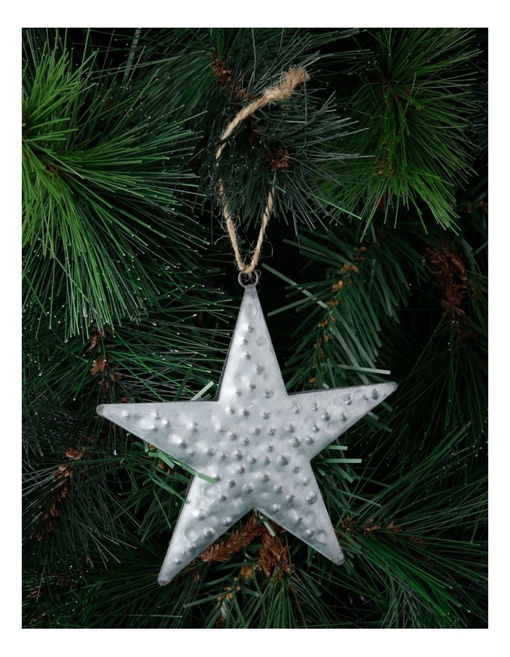 Eucalyptus Silver Hammered Metal Star Hanging Decoration image 2