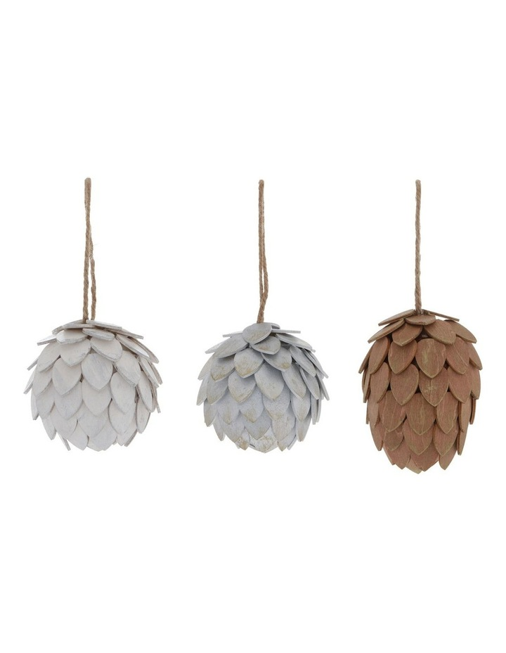 Eucalyptus Assorted Pinecone Hanging Ornaments image 1