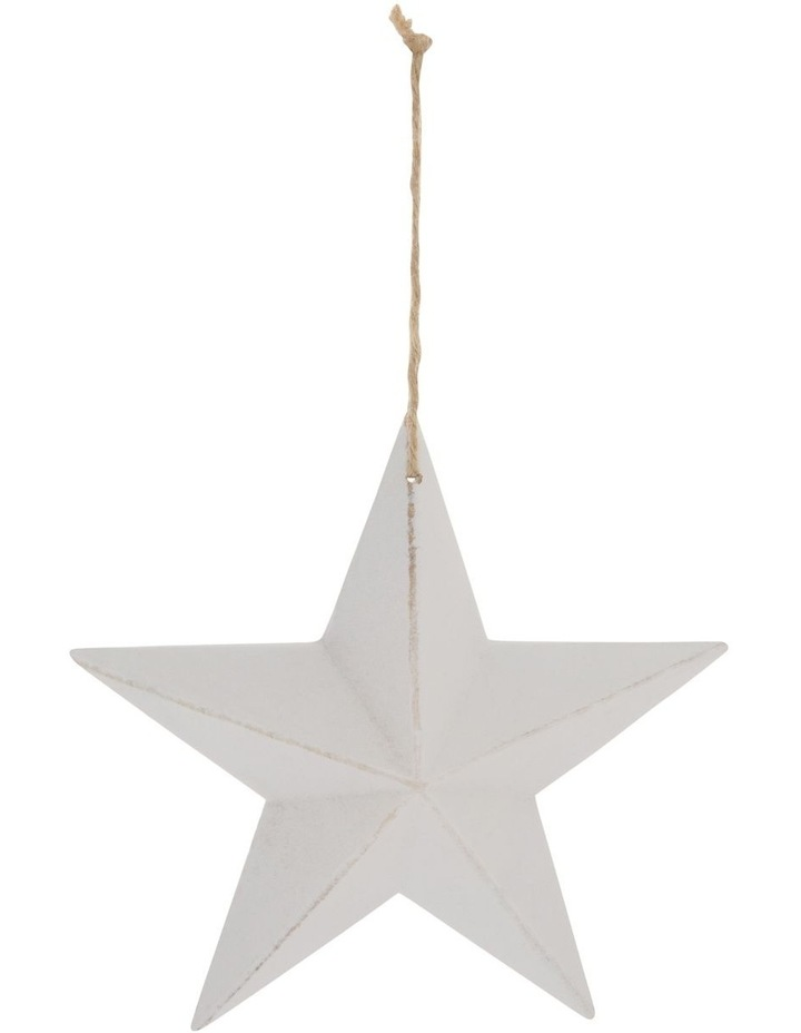 Eucalyptus Whitewashed Wooden Star Hanging Ornament image 1