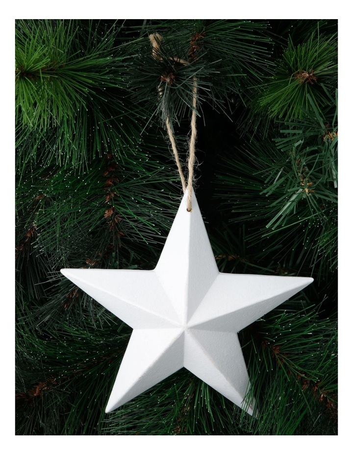 Eucalyptus Whitewashed Wooden Star Hanging Ornament image 3