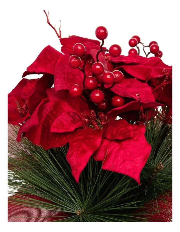 Heirloom Potted Christmas Poinsettia with Pine Detail image 2