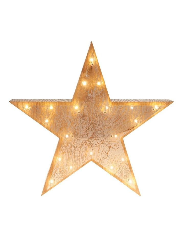 Eucalyptus Large Mercurised LED Star Decoration 35cm image 3