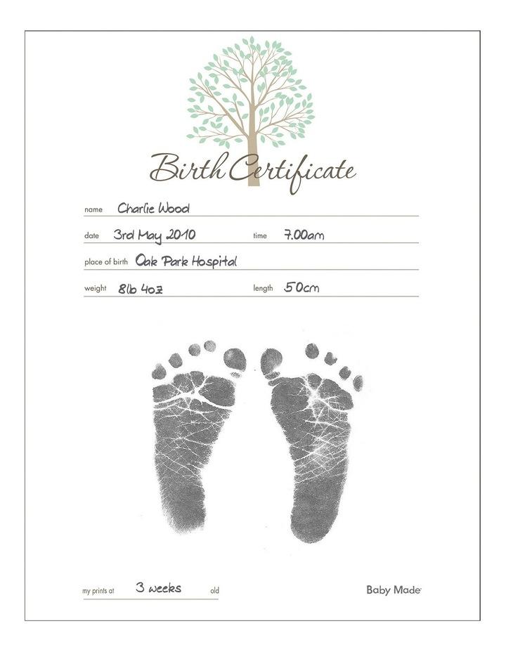 Birth Certificate Kit image 2