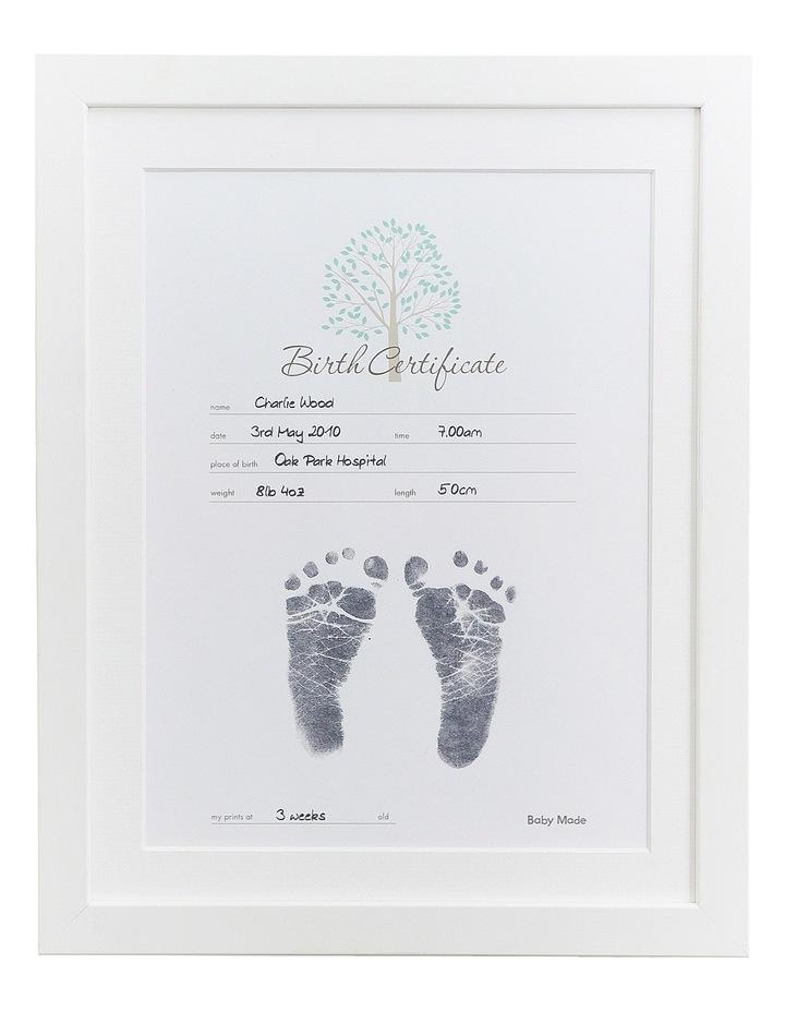 Birth Certificate Kit image 4