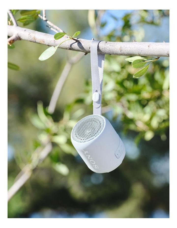 Extra Bass Portable Bluetooth Speaker Grey SRSXB12H image 6