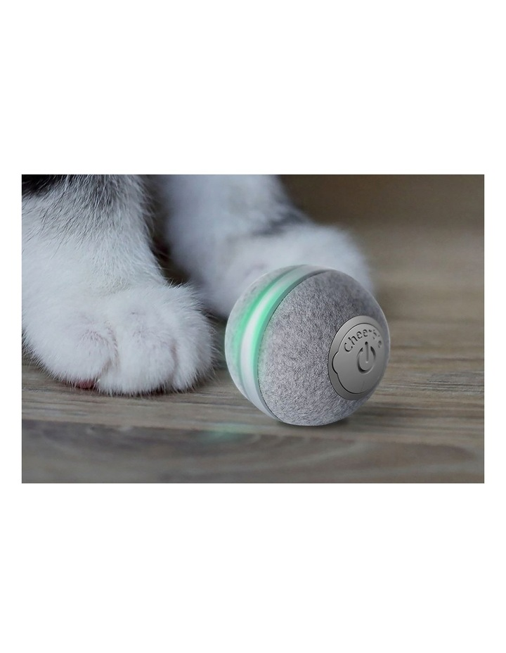 M1 mini cat ball - Grey image 4