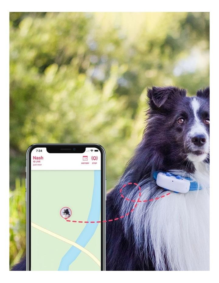 Tractive DOG 4 - GPS Pet Tracker image 2