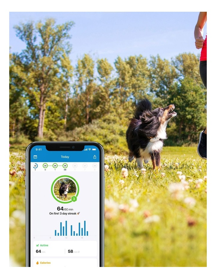 Tractive DOG 4 - GPS Pet Tracker image 3