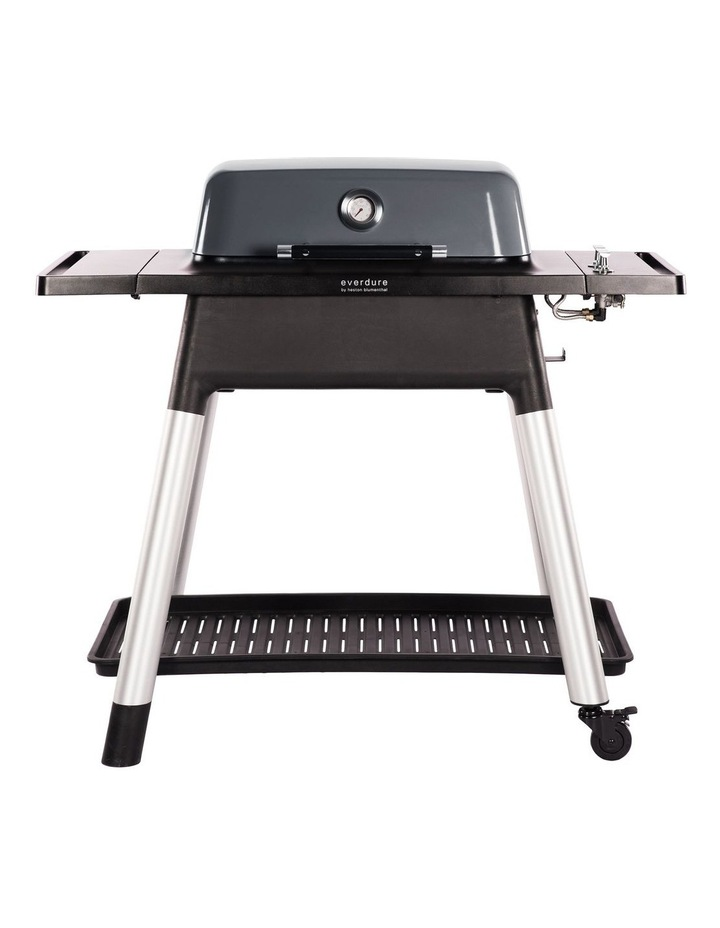 Force 2 Burner Hooded Gas BBQ with Stand Graphite image 1