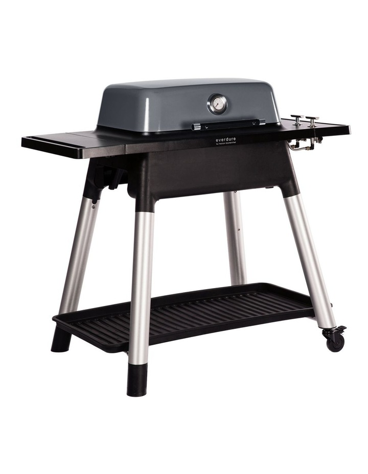 Force 2 Burner Hooded Gas BBQ with Stand Graphite image 2