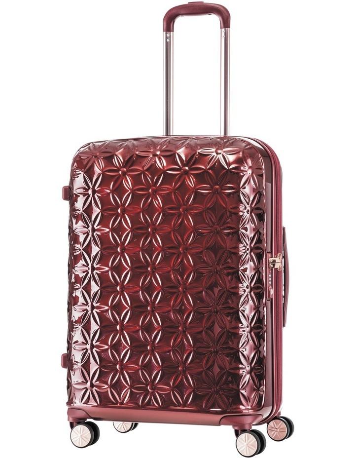 Theoni Hard Spin:Med:Red:66cm 4.1kg image 1