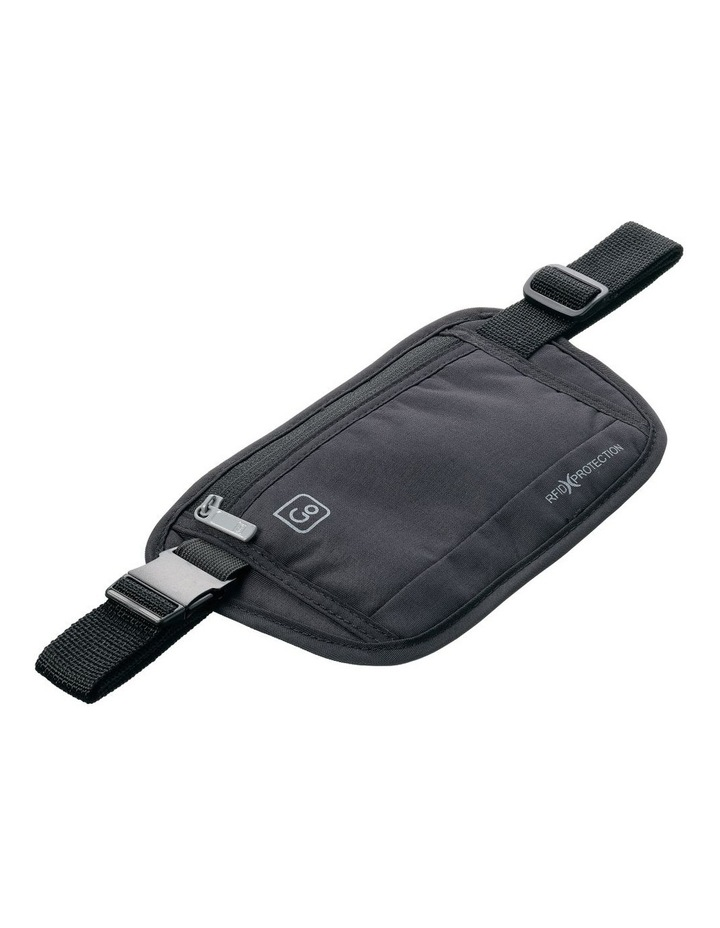 Money Belt image 2