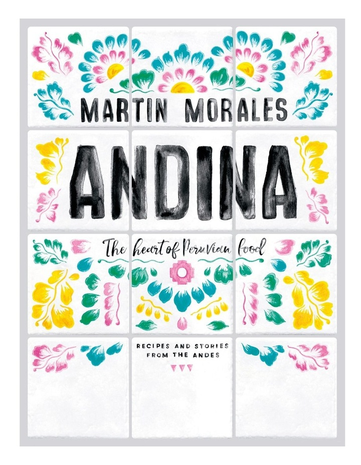 Andina image 1