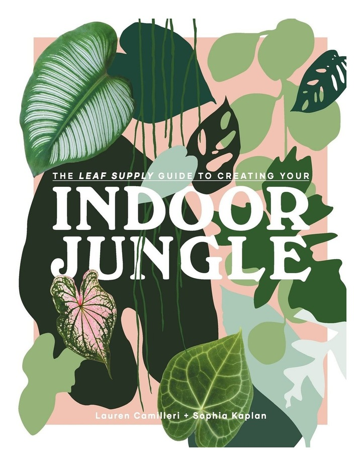 Leaf Supply Guide to Creating Your Indoor Jungle image 1