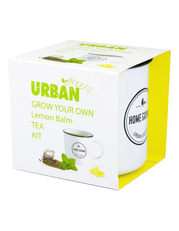 Lemon Balm Grow Your Own Tea Kit image 1