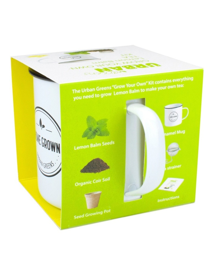 Lemon Balm Grow Your Own Tea Kit image 2