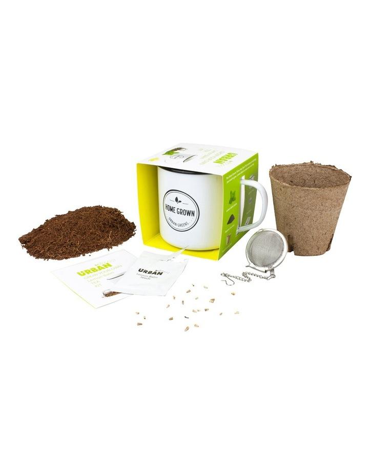 Lemon Balm Grow Your Own Tea Kit image 3