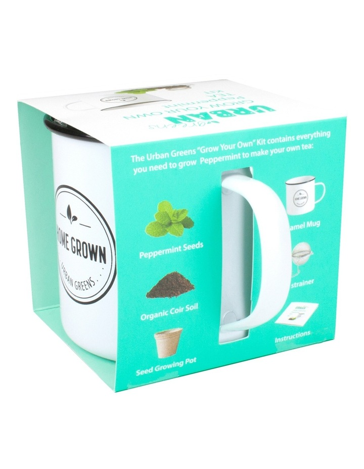 Peppermint Grow Your Own Tea Kit image 2