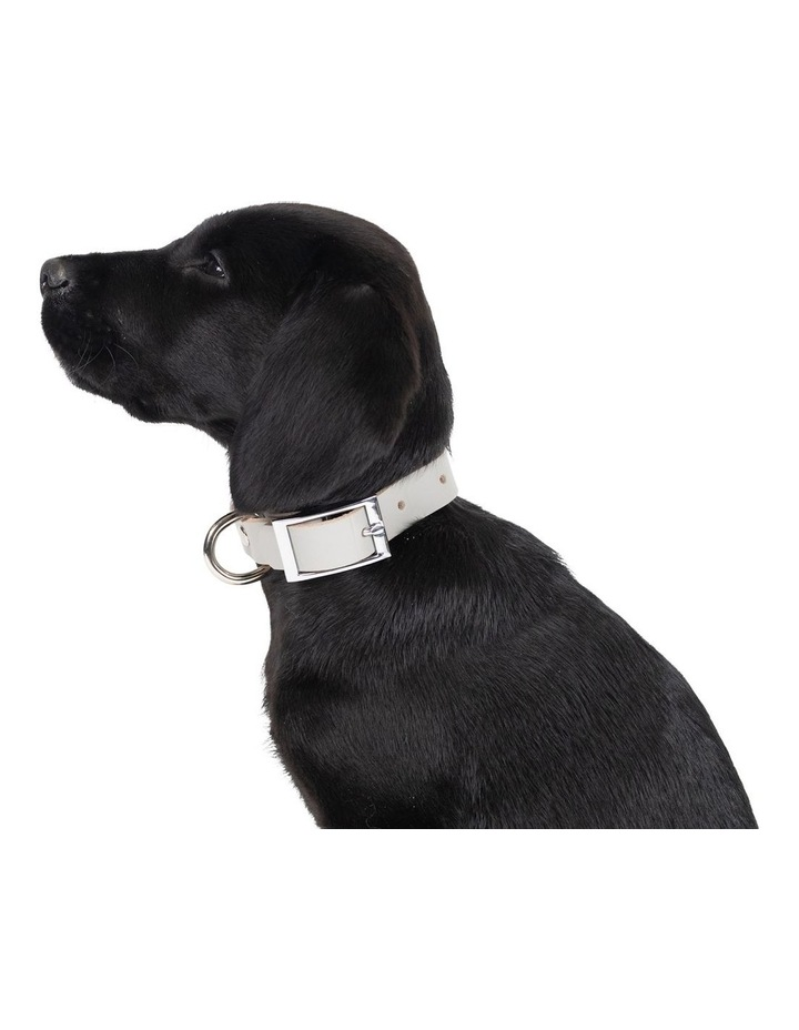 Genuine Leather Collar Grey Small image 3
