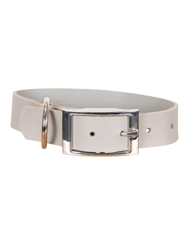 Genuine Leather Collar Grey Medium image 1