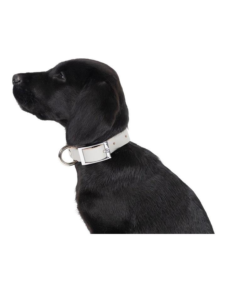 Genuine Leather Collar Grey Medium image 3