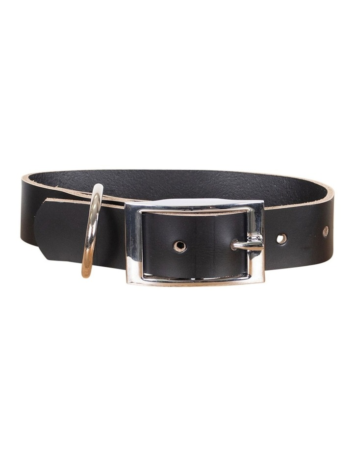 Genuine Leather Collar Black Medium image 1