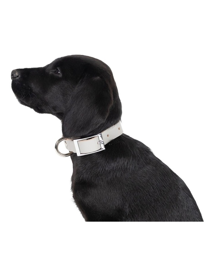 Genuine Leather Collar Grey Large image 3