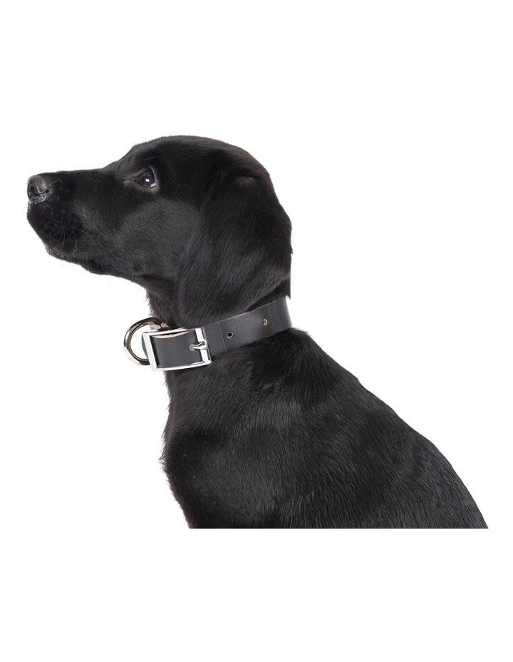 Genuine Leather Collar Black Large image 3