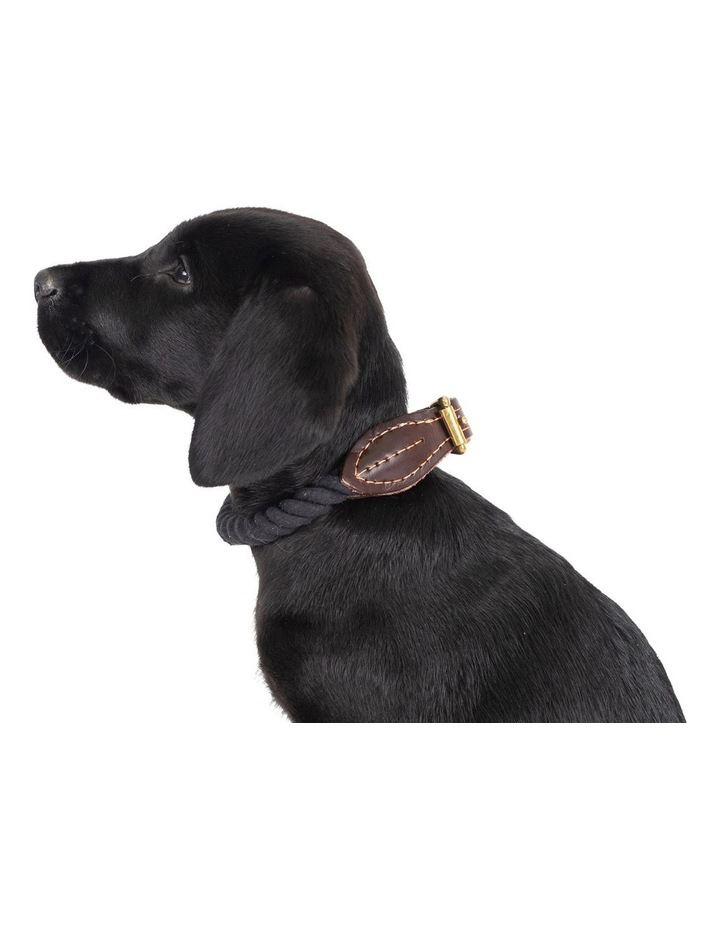 Genuine Leather & Brass Rope Collar Black Large image 3
