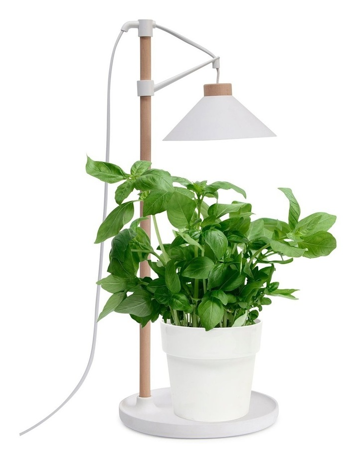 Table Grow Lamp image 4