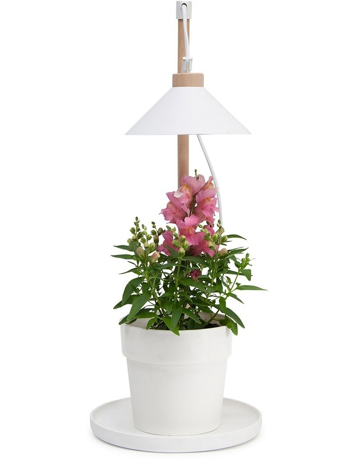 Table Grow Lamp image 5