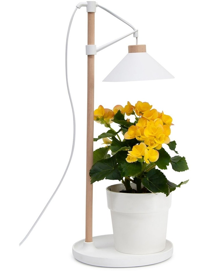Table Grow Lamp image 6