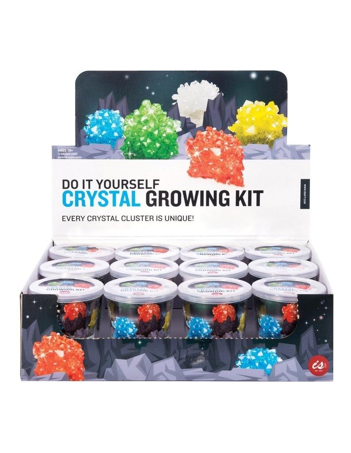 Crystal Growing Kit (12/Disp) image 1