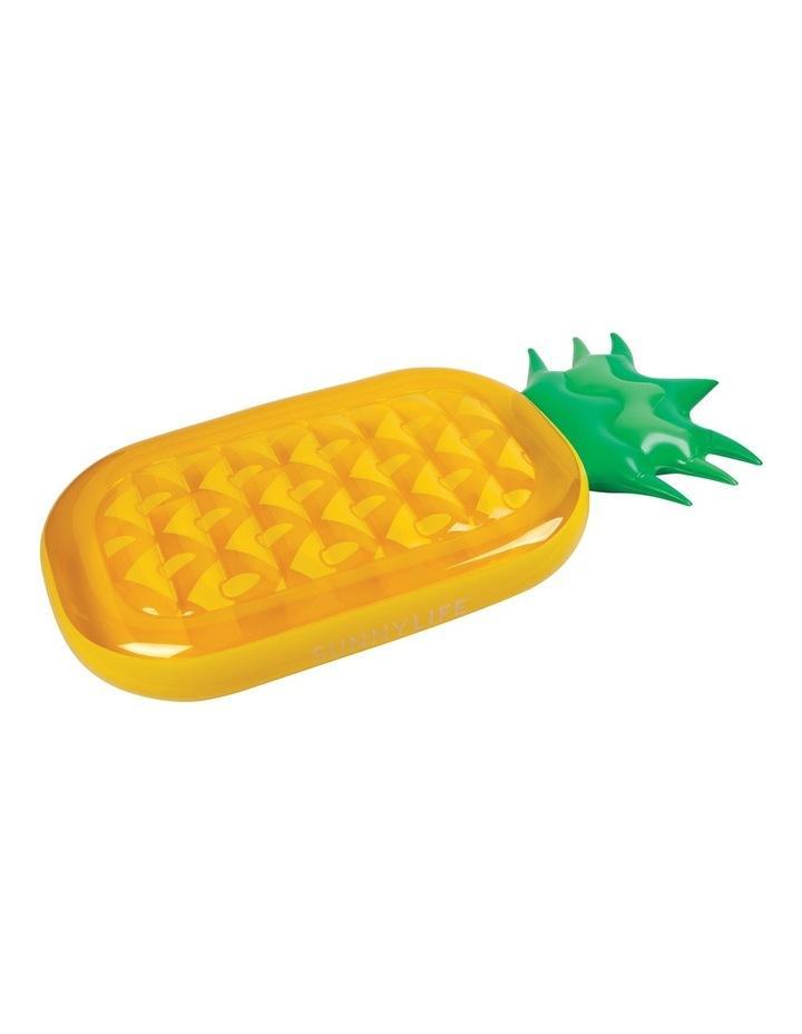 Lie-On Float Pineapple image 2