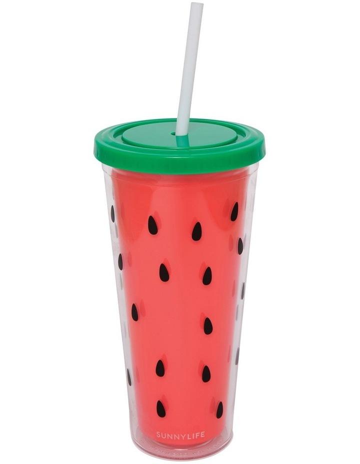 Watermelon Tumbler image 1