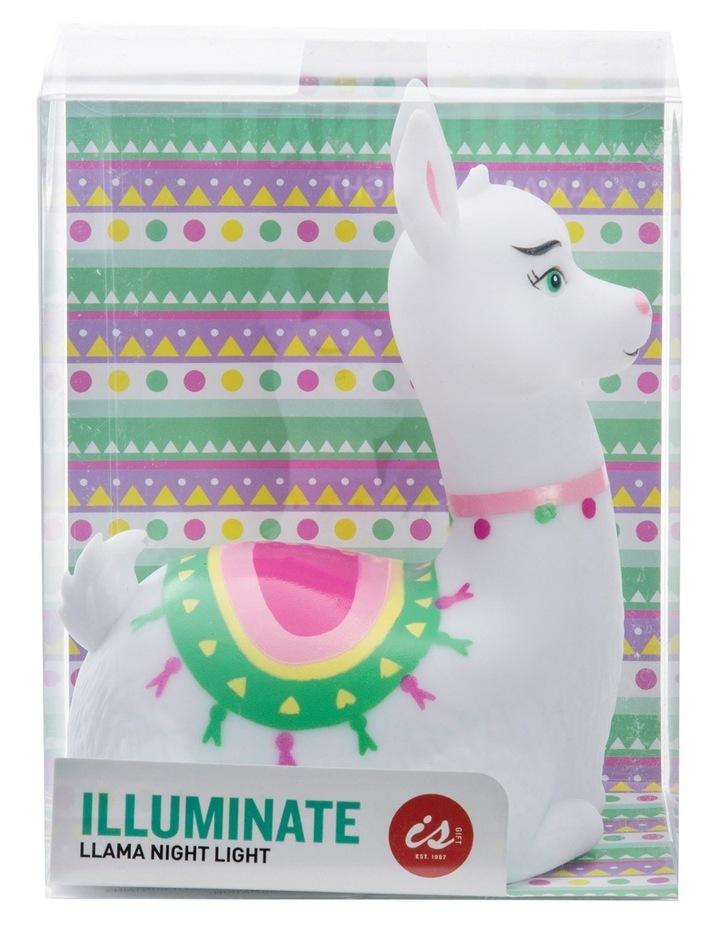 Illuminate - Llama image 5
