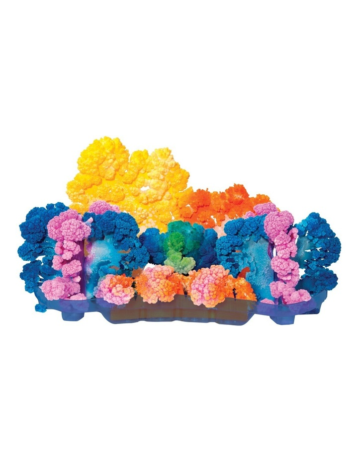 Is Gift Magic Crystal Coral Reef Kit image 5