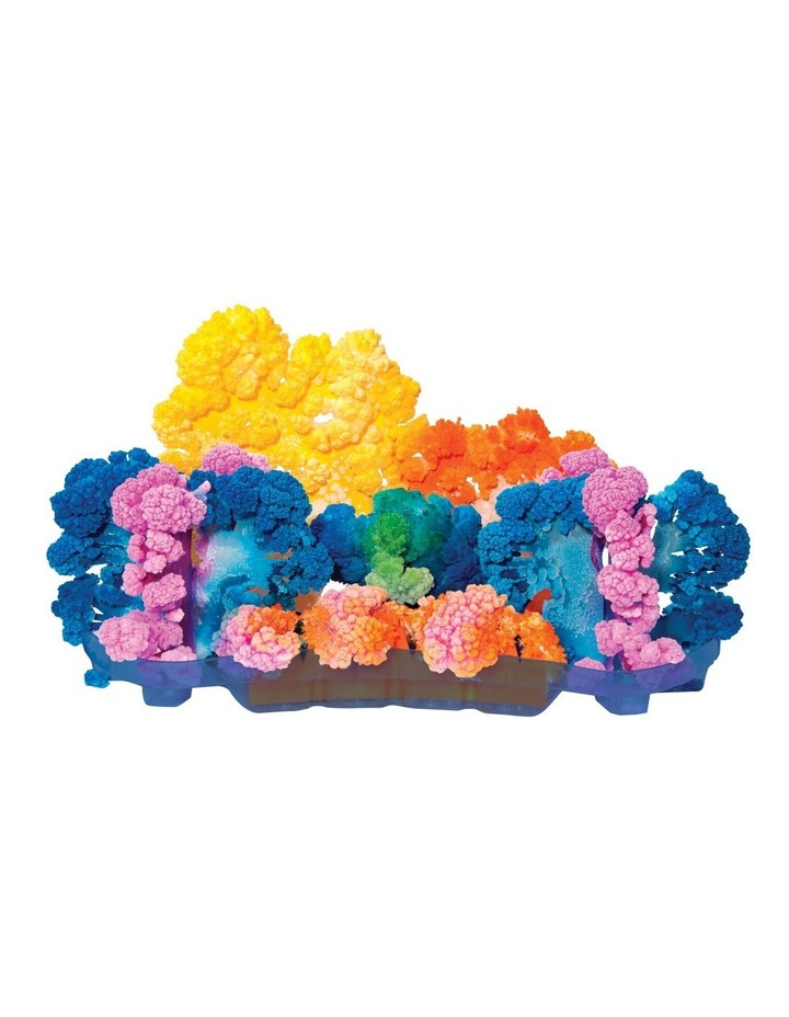 Is Gift Magic Crystal Coral Reef Kit image 6