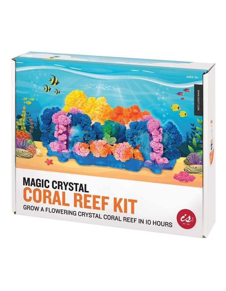 Is Gift Magic Crystal Coral Reef Kit image 7