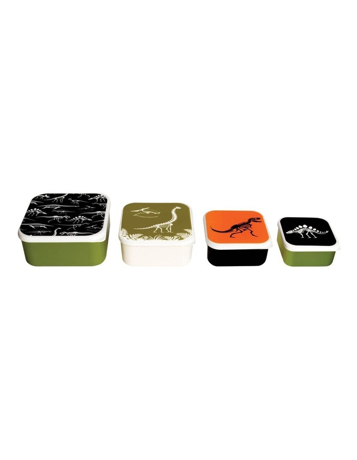 Fun Times Nest Lunch Boxes - Dino (Set of 4) image 3