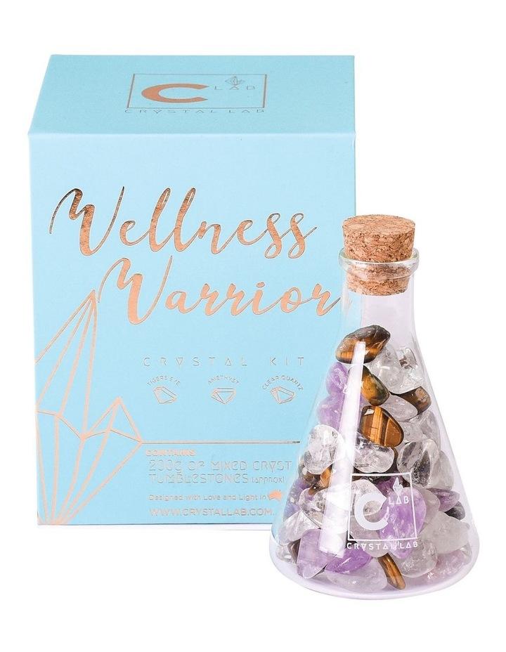 Crystal Kit - Wellness Warrior image 1